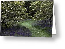Flowering Trees Amid A Meadow Full Greeting Card