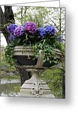 Flowerpot With Hydrangea Greeting Card