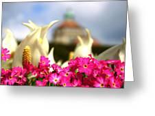 Flowers - Botanical Garden Munich Greeting Card