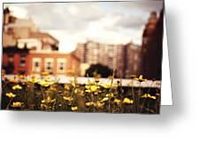 Flowers - High Line Park - New York City Greeting Card