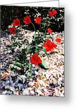 Flowers-23 Greeting Card