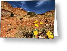 Flowers And Canyons Greeting Card