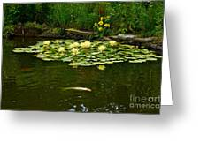 Flowers And Koi Greeting Card