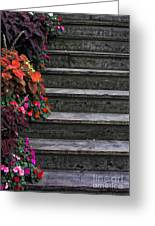 Flowers And Steps Greeting Card