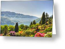 Flowers And Trees Greeting Card
