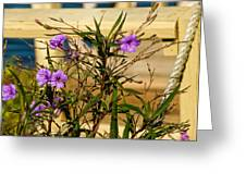 Flowers At The Dock Greeting Card