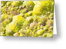 Flowers Flowers Everywhere Greeting Card