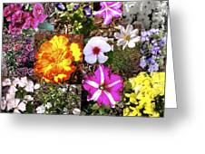 Flowers In Stephanie's Garden Greeting Card