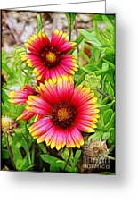 Flowers On The Beach Greeting Card