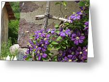 Flowers On The Garden Wall Greeting Card