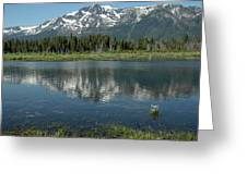 Flowers On The Lake Greeting Card