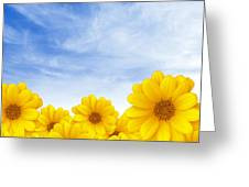 Flowers Over Sky Greeting Card