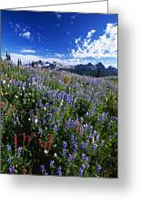 Flowers With Tattosh Mountains, Mt Greeting Card