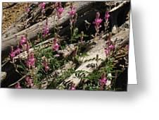 Flowery Log Greeting Card