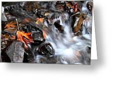 Flowing Color Greeting Card
