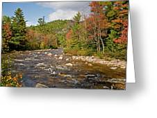 Flowing Into Autumn Greeting Card
