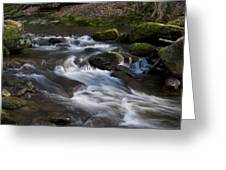 Flowing Love Greeting Card by Victoria Ashley