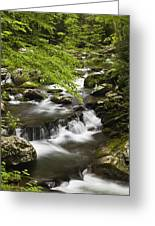 Flowing Mountain Stream Greeting Card