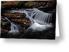 Flowing Through Fall Color Greeting Card