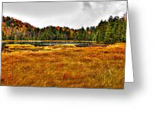 Fly Pond On Rondaxe Road Greeting Card