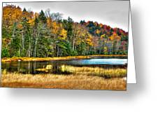 Fly Pond On Rondaxe Road II Greeting Card