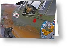 Flying Tigers 02 Greeting Card by Jeff Stallard