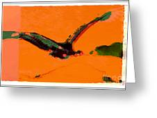 Flying Zone Greeting Card