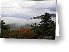 Fog And Foliage Greeting Card
