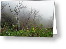 Foggy Day On The Blueridge Greeting Card