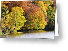 Foliage On The Pond Greeting Card