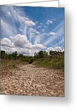 Follow The Path Greeting Card