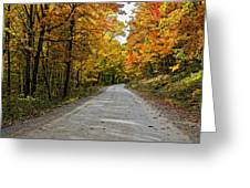 Follow The Yellow Leafed Road Greeting Card