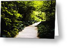 Follow Your Path Greeting Card