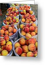 Food - Harvested Peaches Greeting Card