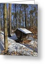 Food Point For Animals In Winterly Forest Greeting Card by Matthias Hauser