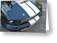 Ford Shelby Gt Nose Study Greeting Card by Samuel Sheats