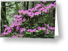 Forest Azealia Tree Greeting Card