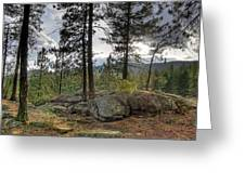 Forest Boulder Formation Near Red Lake Washington Greeting Card