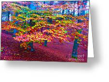 Forest Color Leaves Greeting Card