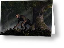 Forest Creeper Greeting Card