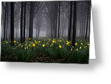 Forest Daffodils Greeting Card