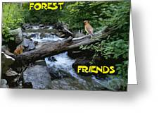 Forest Friends Sharing A Log Over A Creek On Mt Spokane Greeting Card