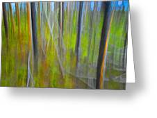 Forest Impression Photographic Image Yellowstone No. 2135. Greeting Card