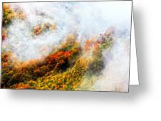 Forest In Veil Of Mists Greeting Card