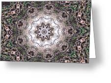 Forest Mandala 4 Greeting Card