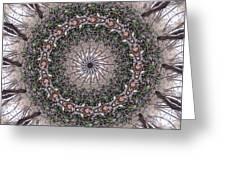 Forest Mandala 5 Greeting Card
