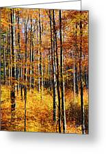 Forest Of Gold Greeting Card