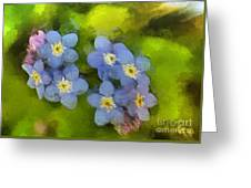 Forget-me-not Flower Greeting Card