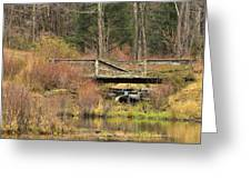 Forgotten Places Greeting Card