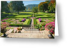 Formal Garden I Greeting Card by Steven Ainsworth